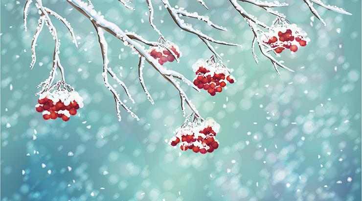 Je li hladnoća zdrava? Liječenje hladnoćom