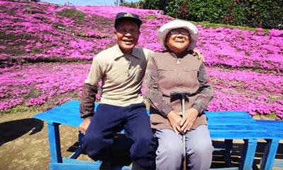 Ljubav u starim godinama