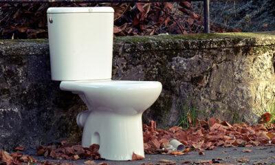 Kako živjeti bez wc-a?