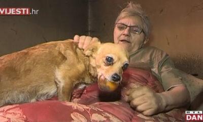 Pas spasio čovjeka iz požara